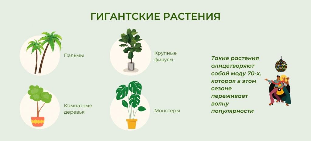 Гигантские растения